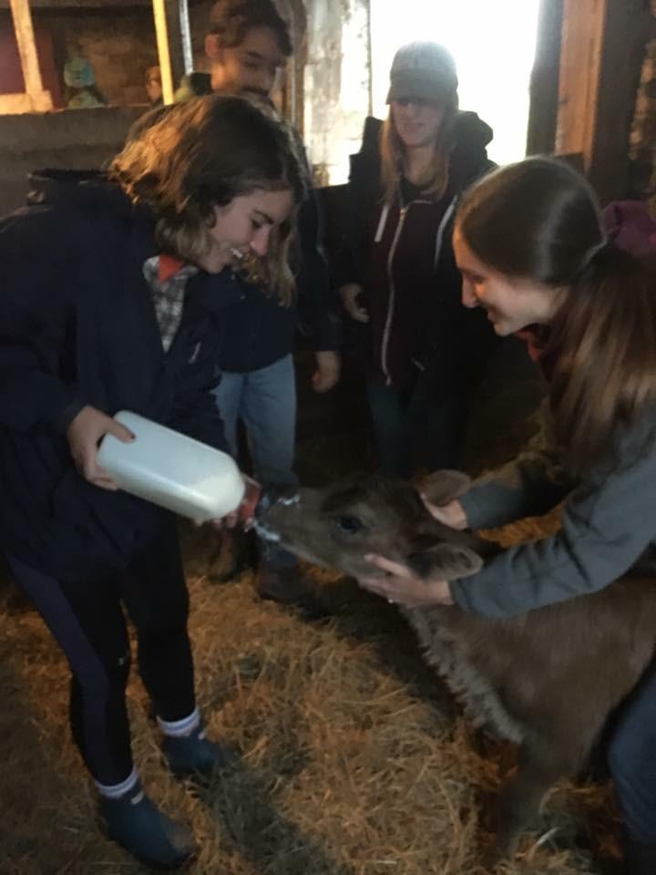 2 girls feeding milk to a goat