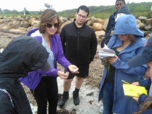 examining shells