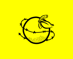 Amnesty International at SU logo
