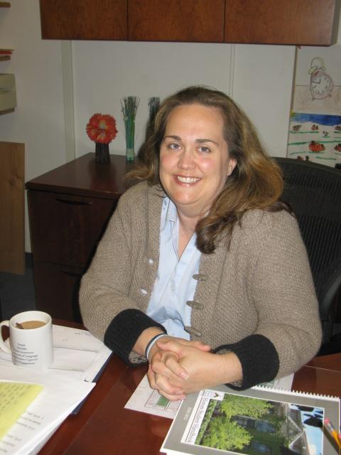 Blythe Scherrer - Functional Business Analyst